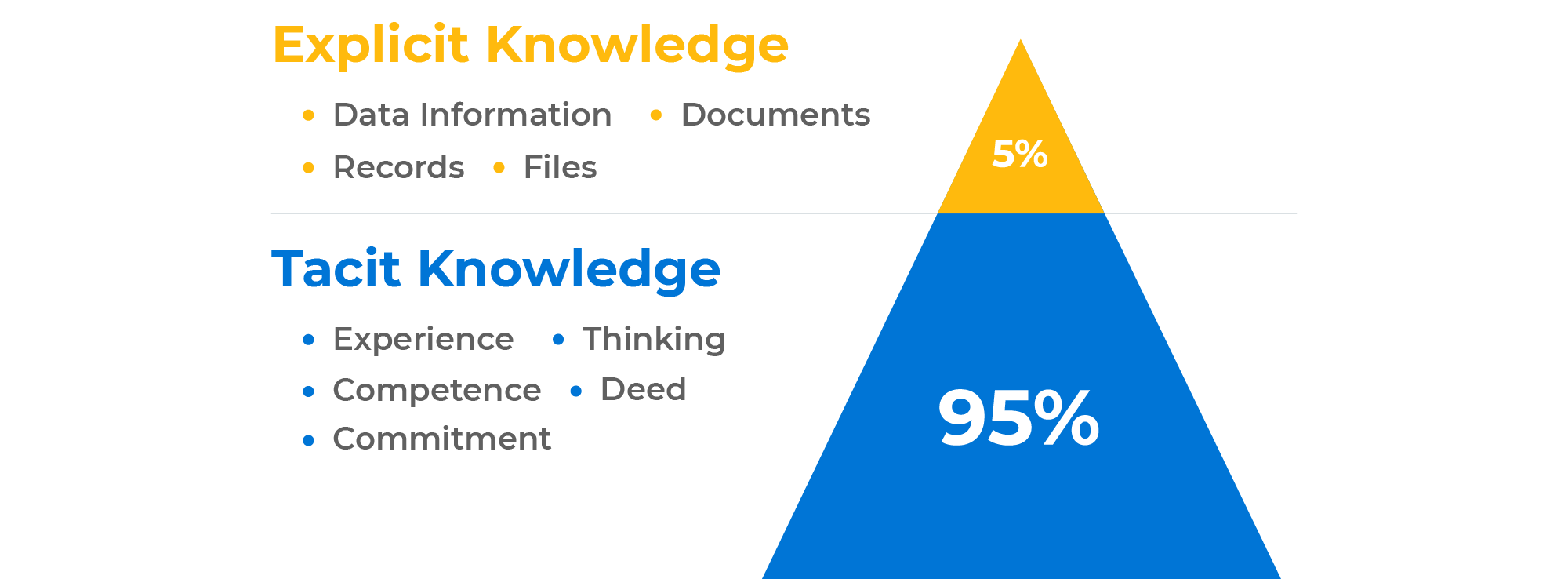 What is Tacit Knowledge?